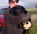 Boundary Bay Veterinary Specialty Hospital Client Testimonial