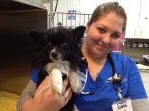 Floyd and Randi, a registered Animal Health Technician at Boundary Bay Veterinary Specialty Hospital