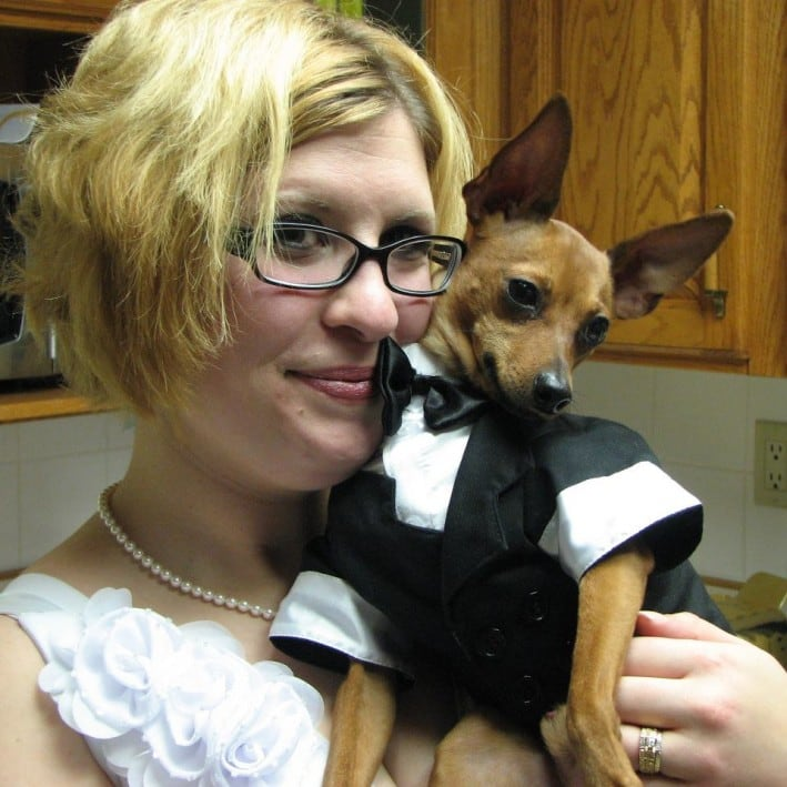Radar the Miniature Pinscher all dressed up