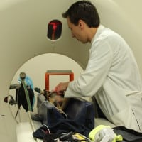 Board-Certified Veterinary Neurologist and CT Scan