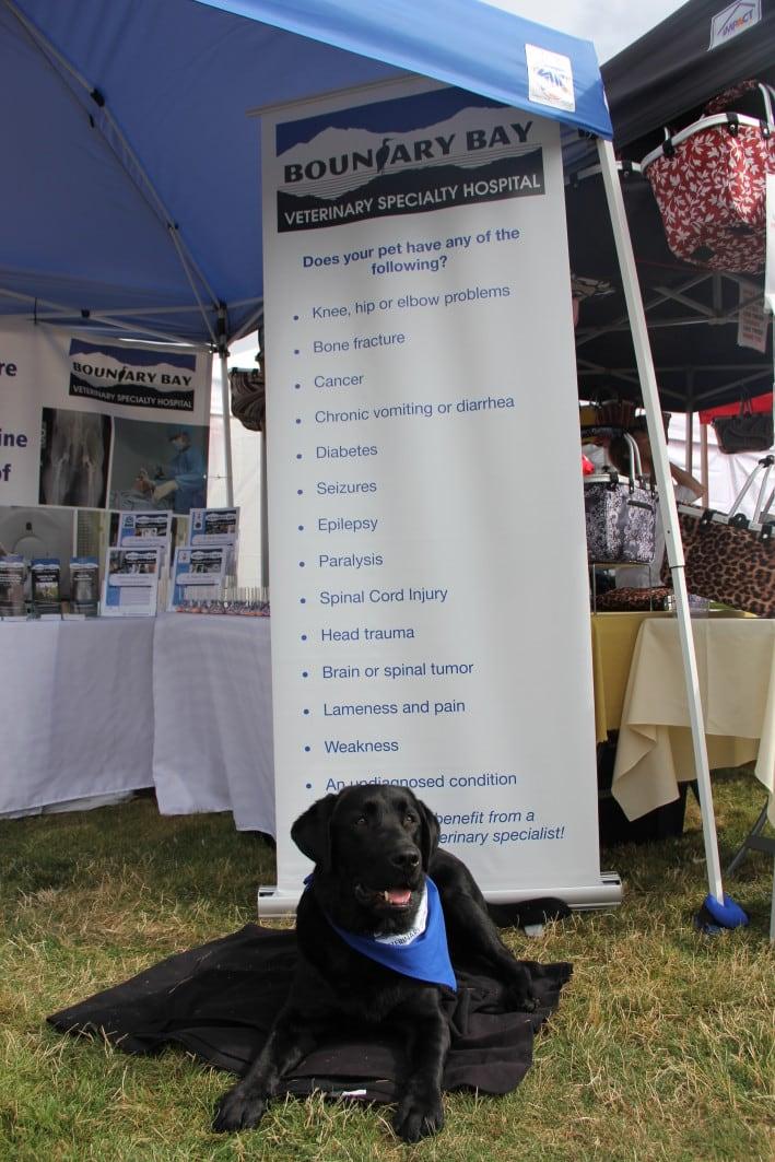 Pet-A-Palooza Victoria Boundary Bay Veterinary Specialty Hospital