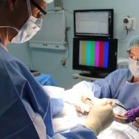 Veterinary Board-Certified Surgeon