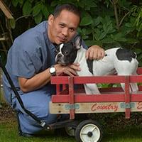 Glenn Pepito | Veterinary Physiotherapist