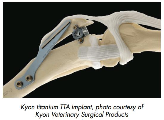 kyon-implant